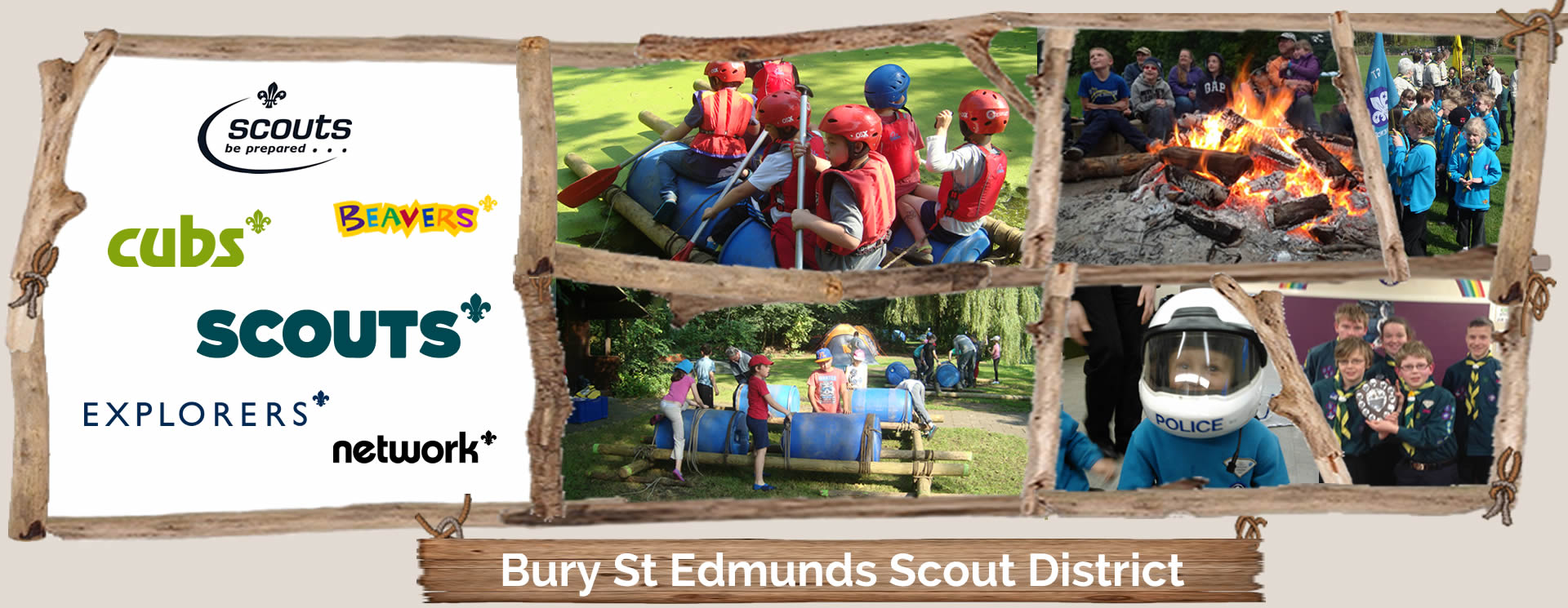 Bury St Edmunds District Scouts logo